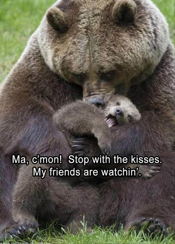 Mothers Day Pet Meme